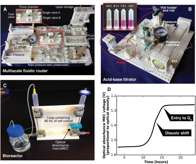 Lego like structures for chemical and biological research