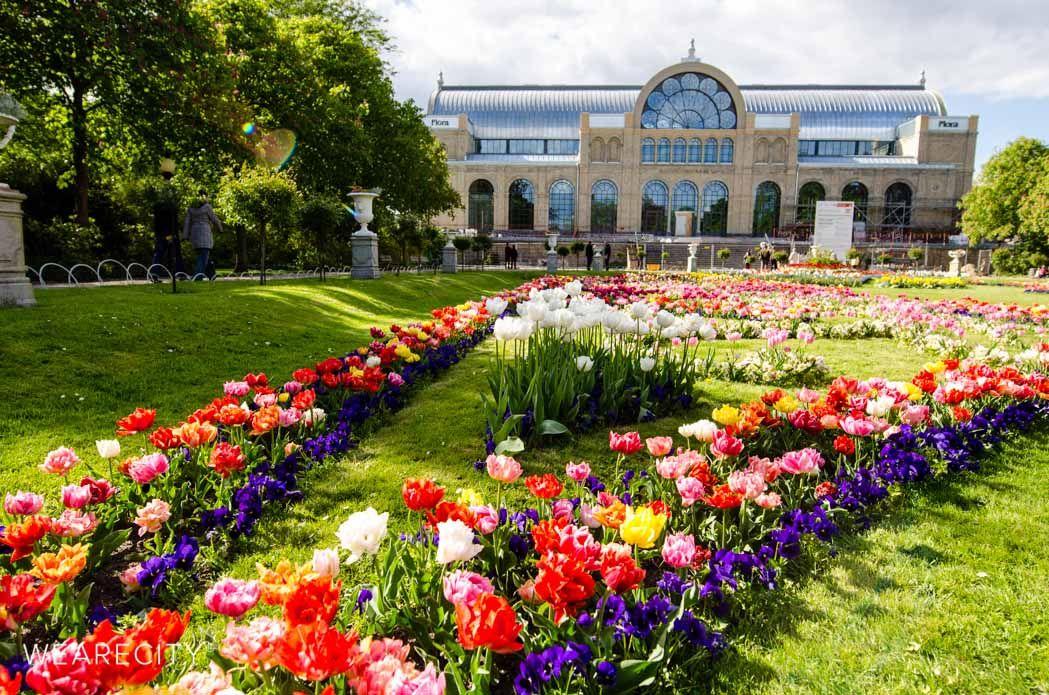 Stunning Flora und Botanischer Garten K ln