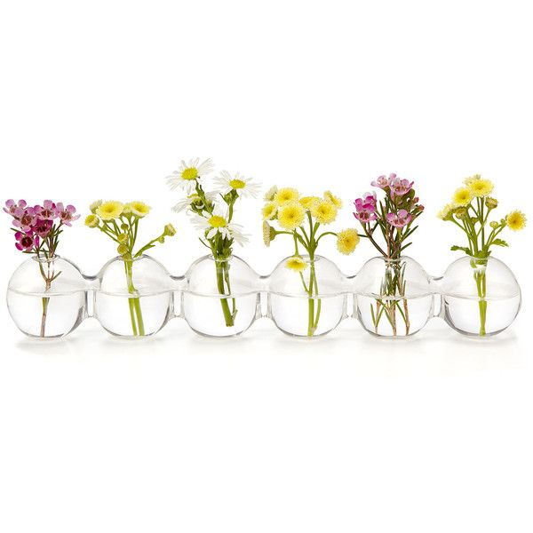 Caterpillar Bud Vase 20 Liked On Polyvore Featuring Home Home