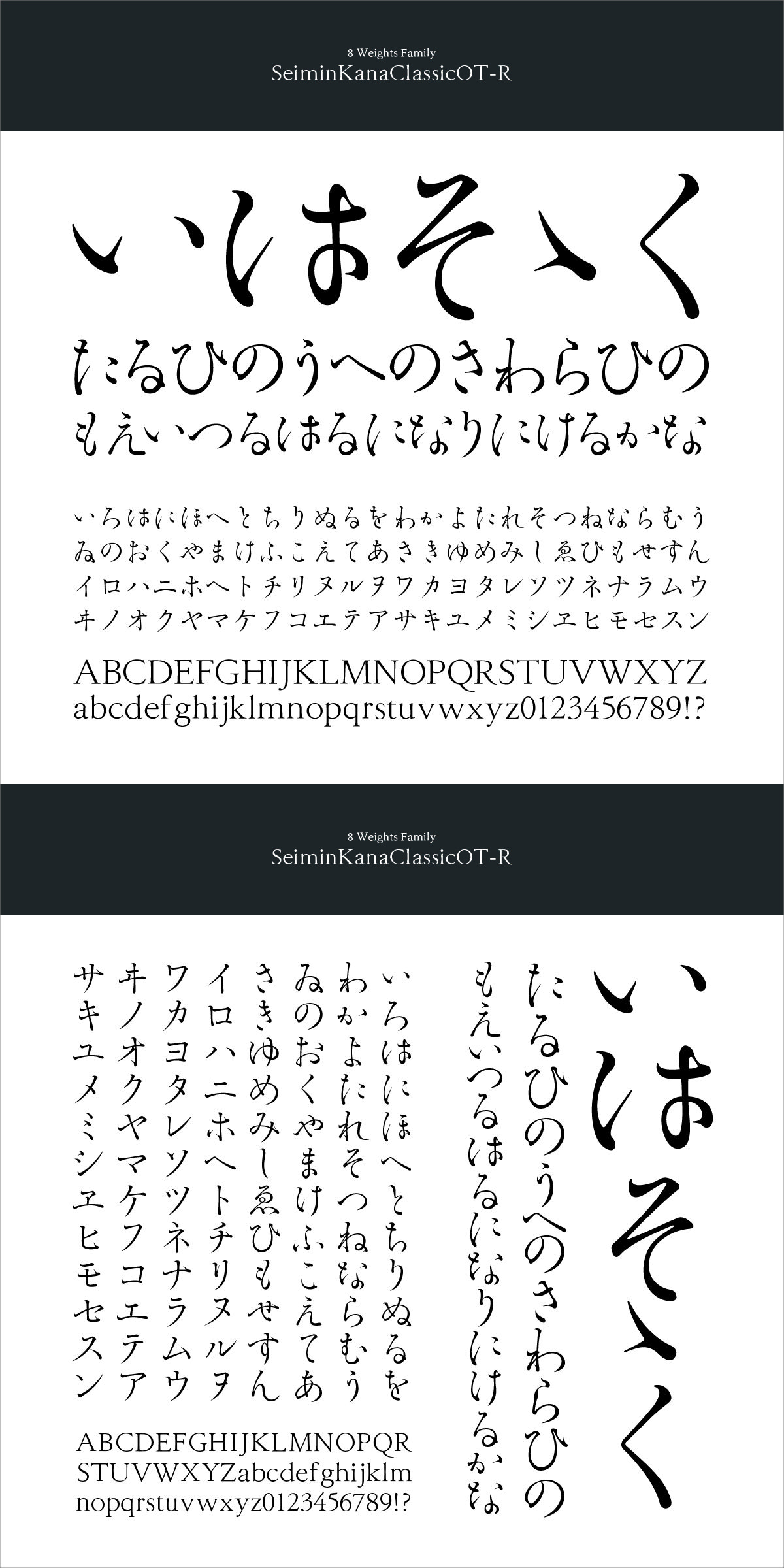 勢蓮明朝仮名classicot R フォント タイポグラフィ 書体