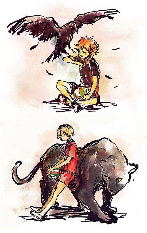 haikyuu- cat and crow