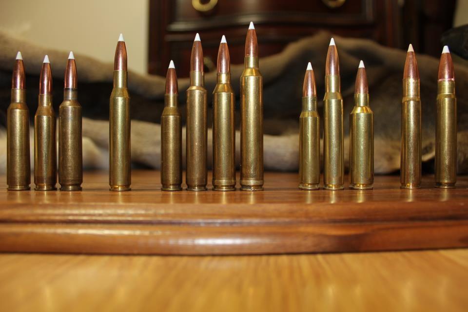 6 5 x 55, 260 Remington, 6 5 x 284 Norma, 270 Winchester