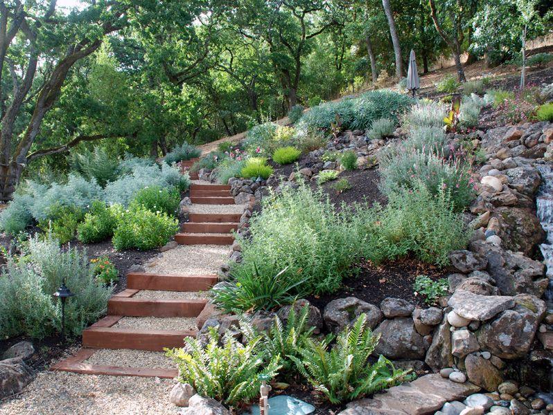Drought tolerant green gardens drought tolerant green for Green garden designs