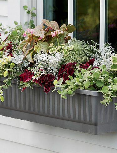 97a48a4cd96935198f2db57654ad429d - Gardeners Supply Self Watering Window Box