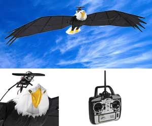 Remote Controlled Bald Eagle. Very cool website as well. Lots of ...