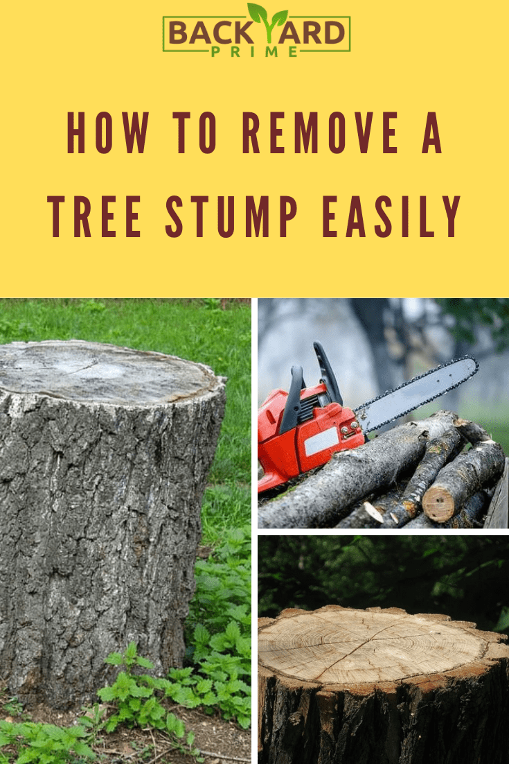 How To Remove A Tree Stump Easily Tree Stump Garden Mulch Stump Removal