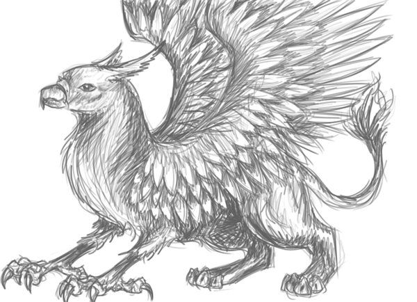 Griffin Drawings | grey griffin by creature-love | WOWOW ...
