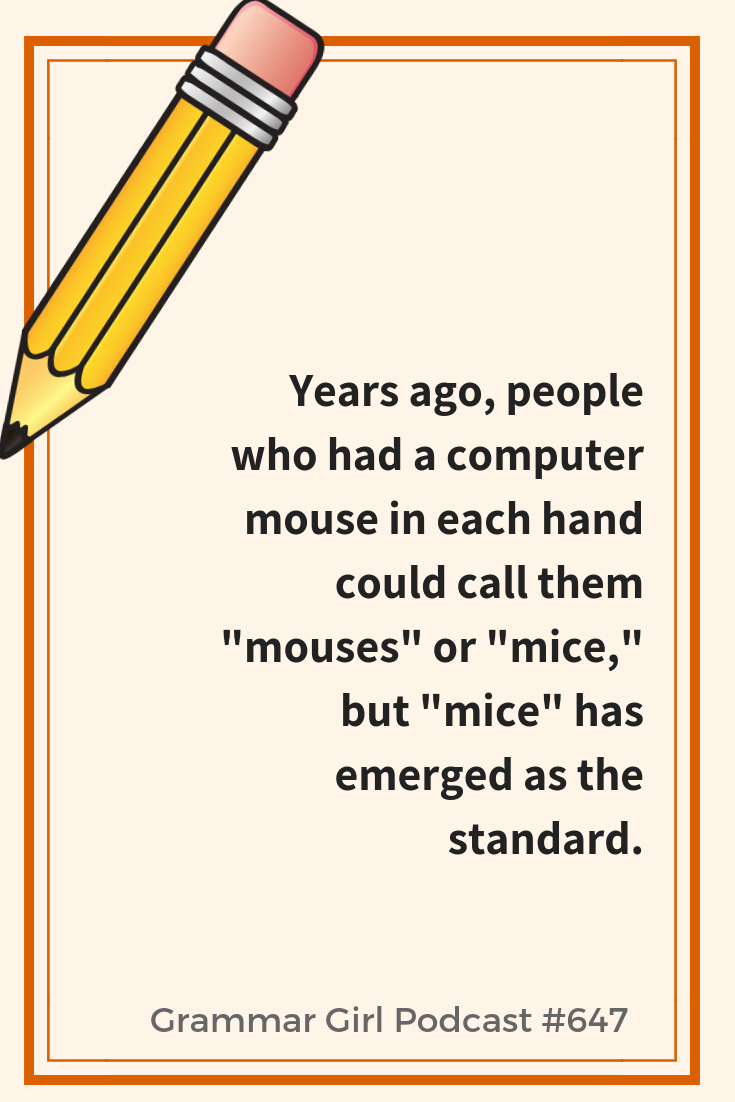 What Is The Plural Of Mouse Plurals Commonly Confused Words Grammar