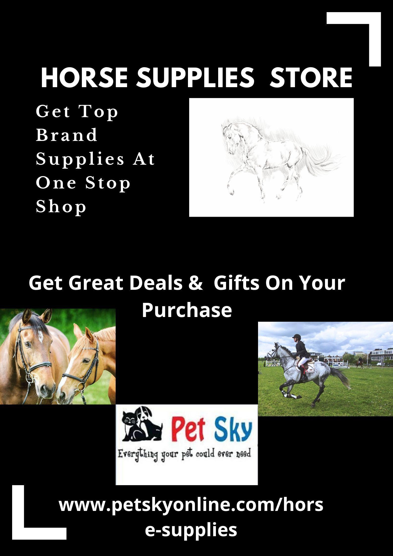 Horse Supplies Dubai Online Store For Horse Riding Equipments