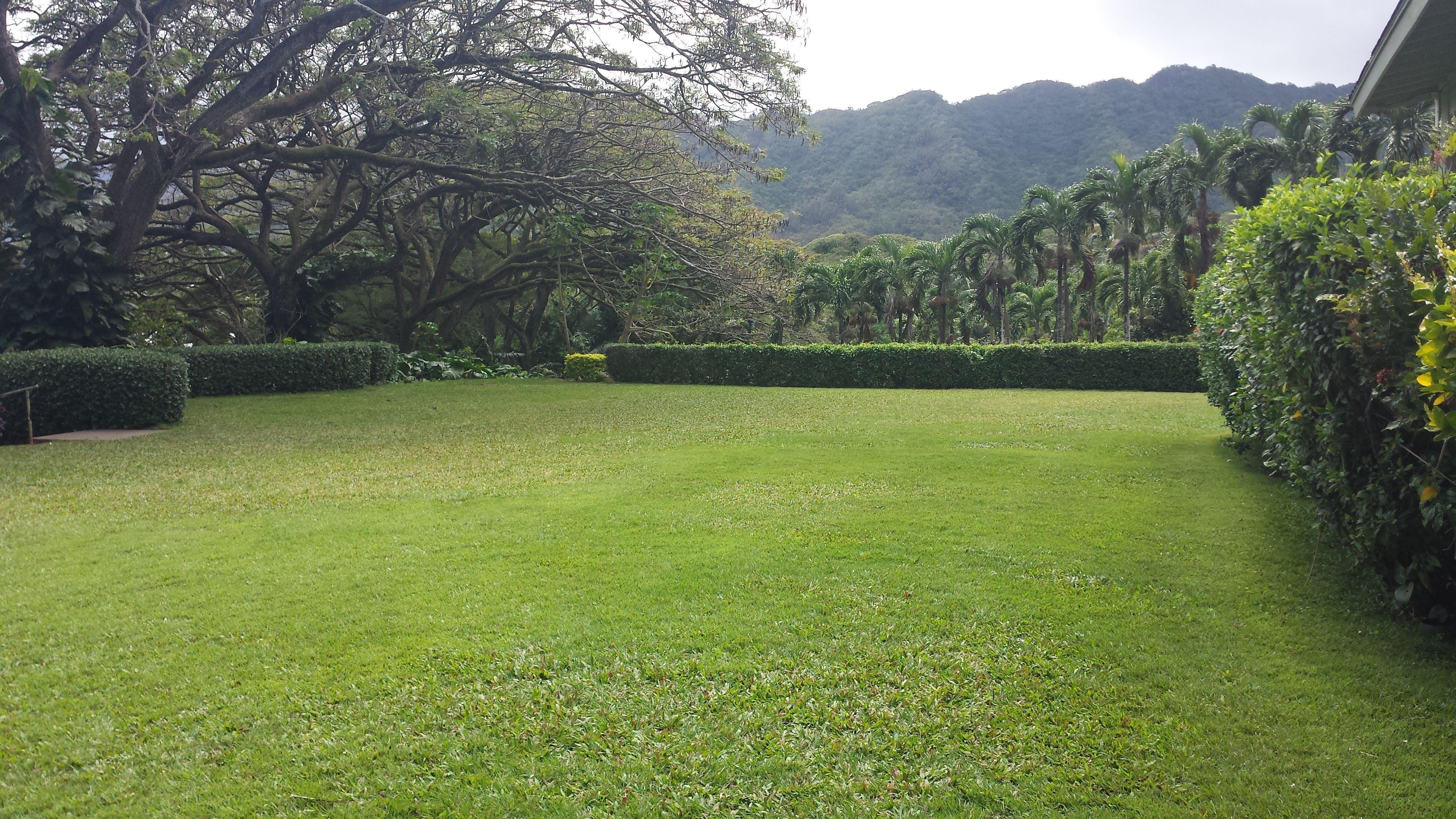 Molii Gardens
