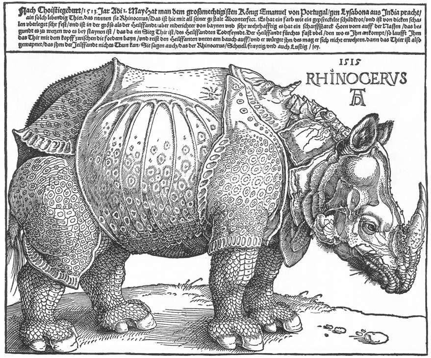 The Rhinoceros by Albrecht Durer, 1515