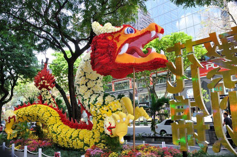 Chinese New Year Dragon Decoration. SINGAPORE JANUARY 13