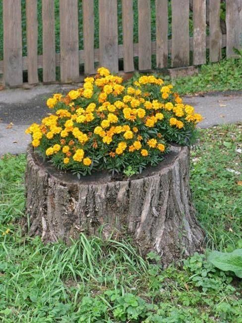 Ideas con troncos para tu jard n 1 troncos jard n y ideas - Troncos para jardin ...