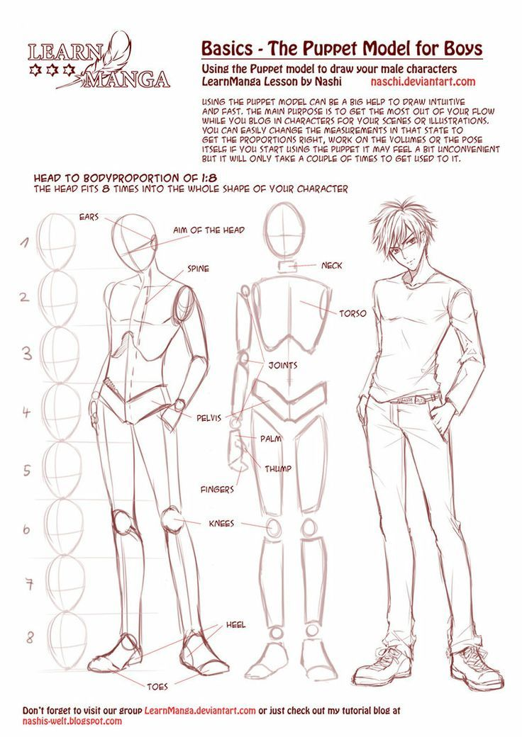 character anatomy and body tutorial | Drawing Tips | Pinterest ...