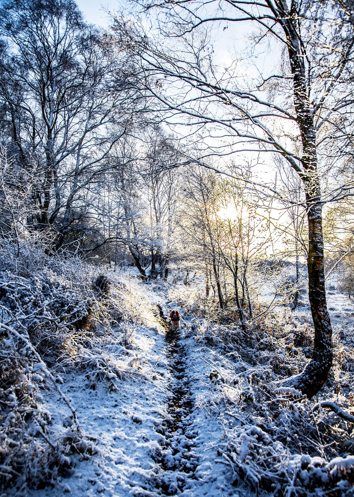 Küchenideen für wohnmobile first snow fall no location given by paul antony spilsburycr