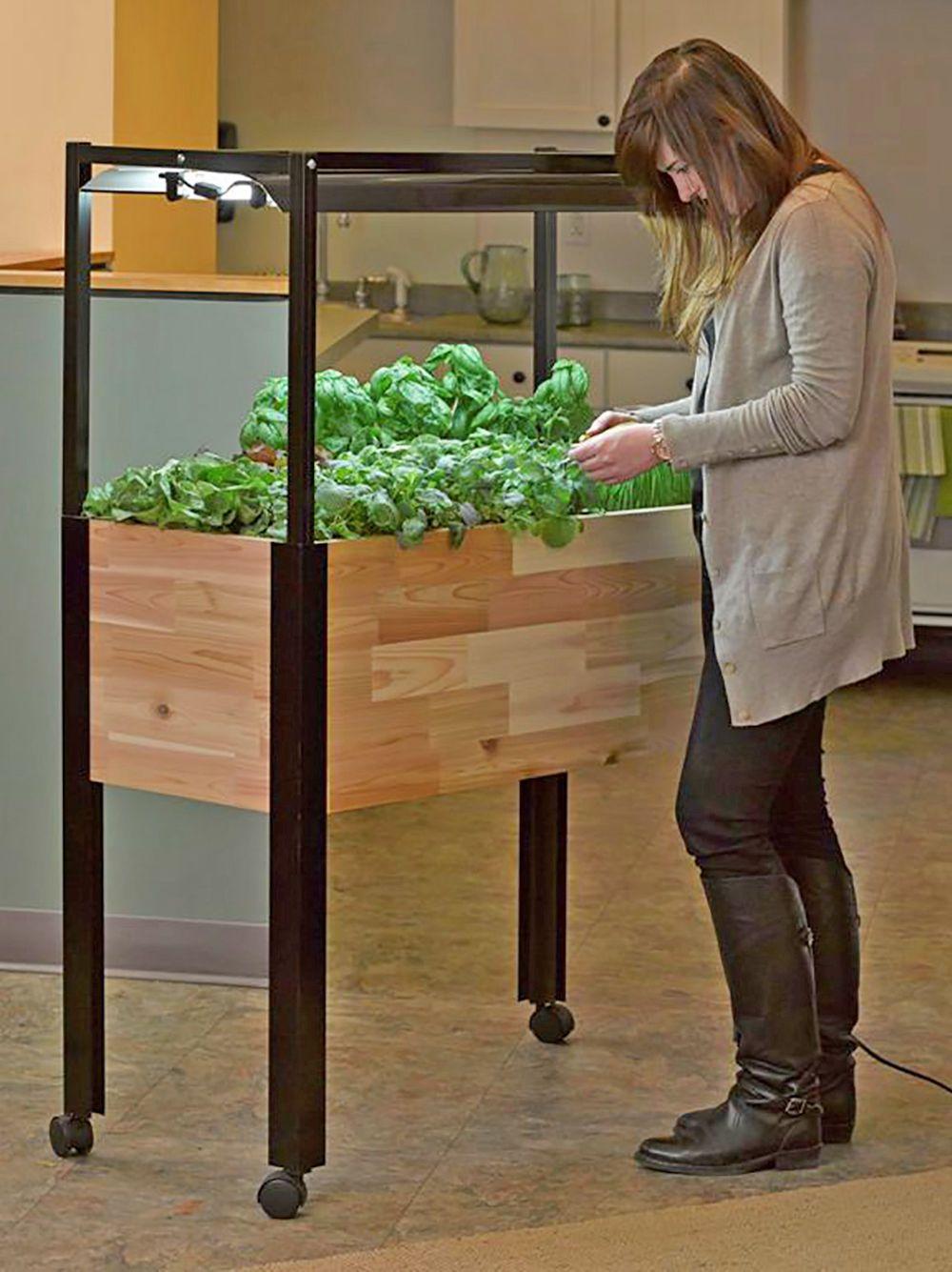Indoor Planters: Mobile Salad Garden   Gardener\'s Supply   Gardening ...