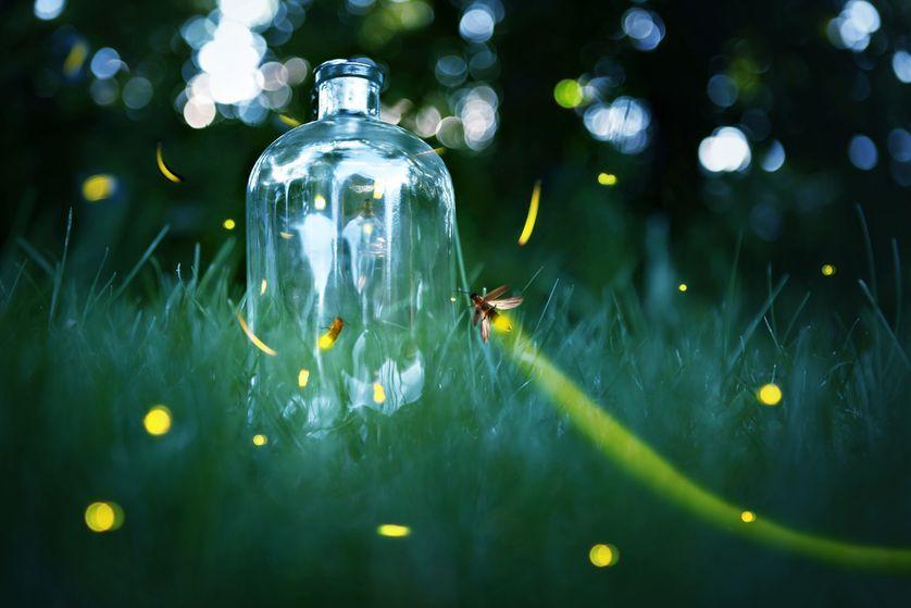 Your best | Glow stick jars, Fireflies in a jar, Fairy jars |Fireflies In A Jar Cover Photo