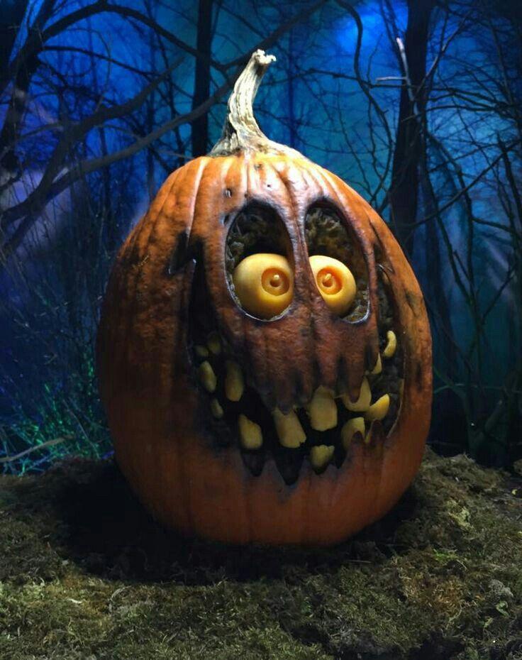 Scary pumpkin jackolantern halloween Citrouille
