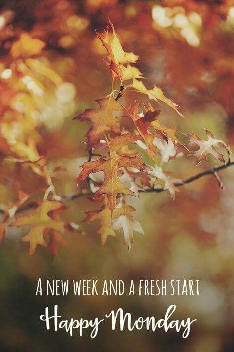 Image result for Autumn Monday images