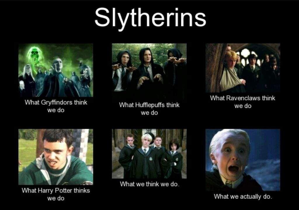Image Result For Harry Potter Memes Slytherin Harry Potter Harry Potter Memes Harry Potter Jokes