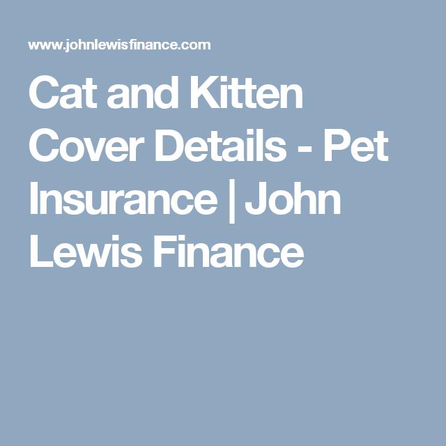 Cat And Kitten Cover Details Pet Insurance John Lewis Finance