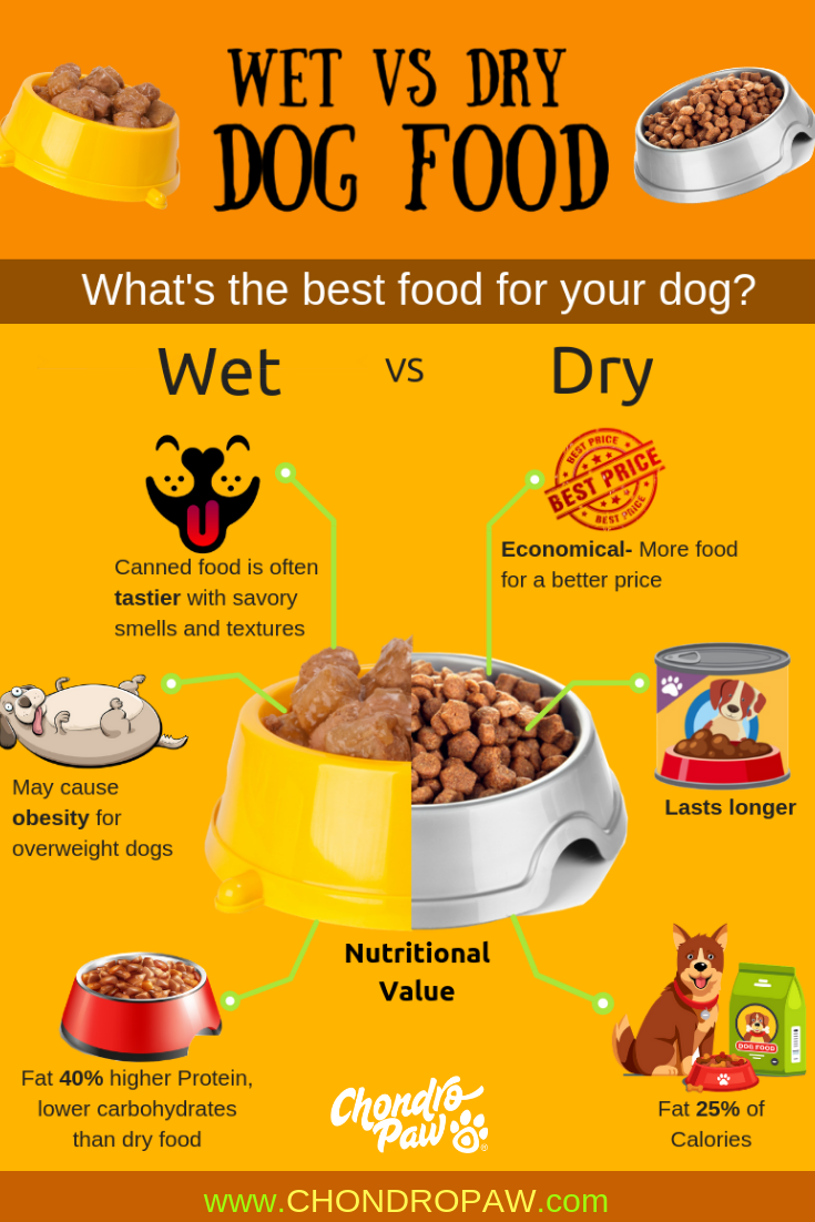 The Best Dog Food Wet Vs Dry Can Dogs Eat Tomatoes Food Dog