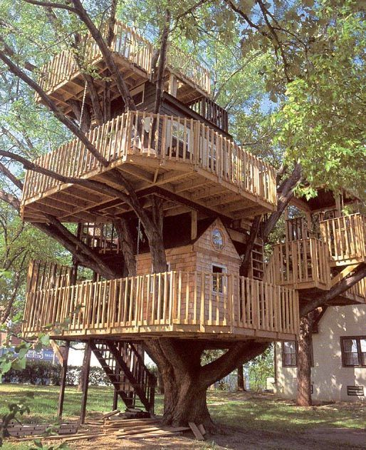 Three Level House In The Trees