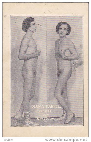 Lesbian began molding itself