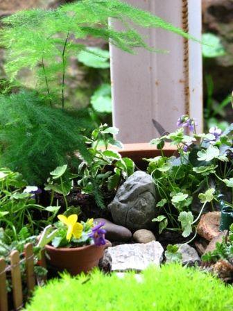 Fantastic Fairy Garden Calloways Nursery Fairy Garden Garden Oasis Garden