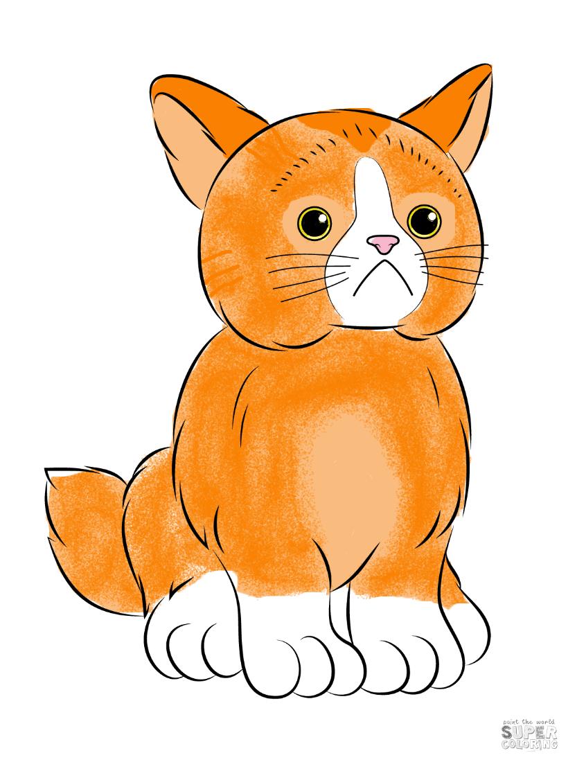 Curious Kitten Www Supercoloring Com Coloring Pages Webkinz Grumpy Cat Colore Online Super Coloring Character Pikachu Pics