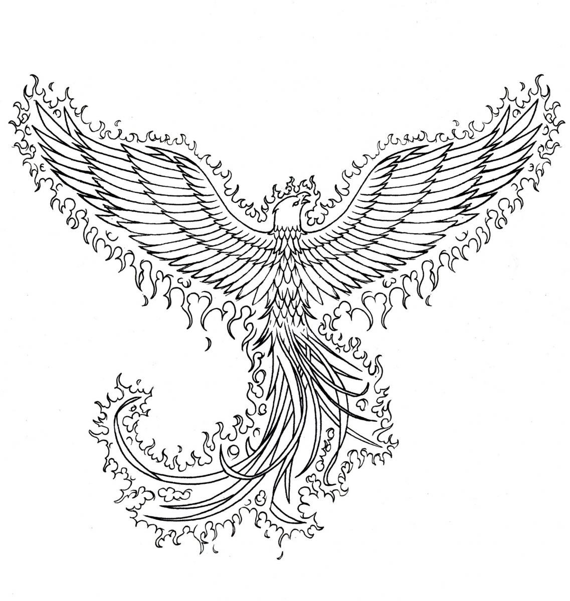 Bird Line Drawing Tattoo : Drawing of the phoenix bird ink line art