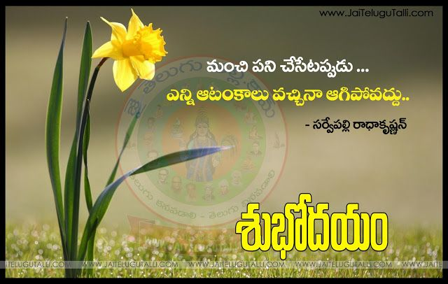 Telugu Good Morning Quotes Wshes For Whatsapp Life Facebook Images Inspirational Thoughts Morning Quotes Good Morning Quotes Good Morning Inspirational Quotes