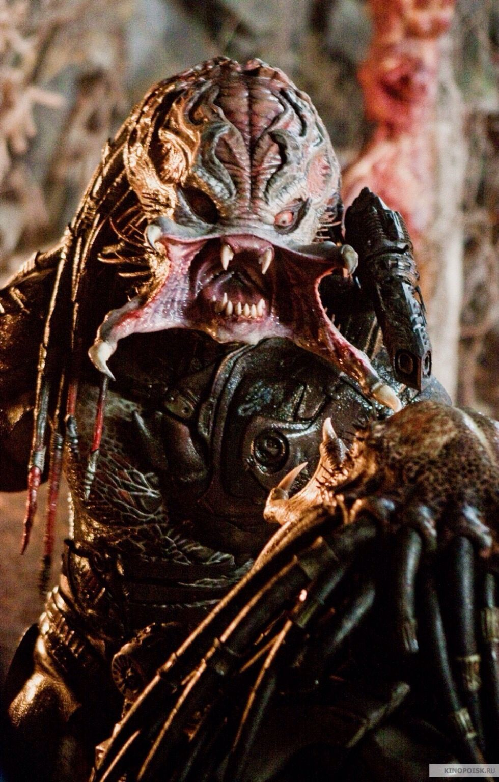 The Movie Predators This Is Not What I Look Like In Real Life I Do Not Shape Shift I Look As I Am What You See Is What You Get