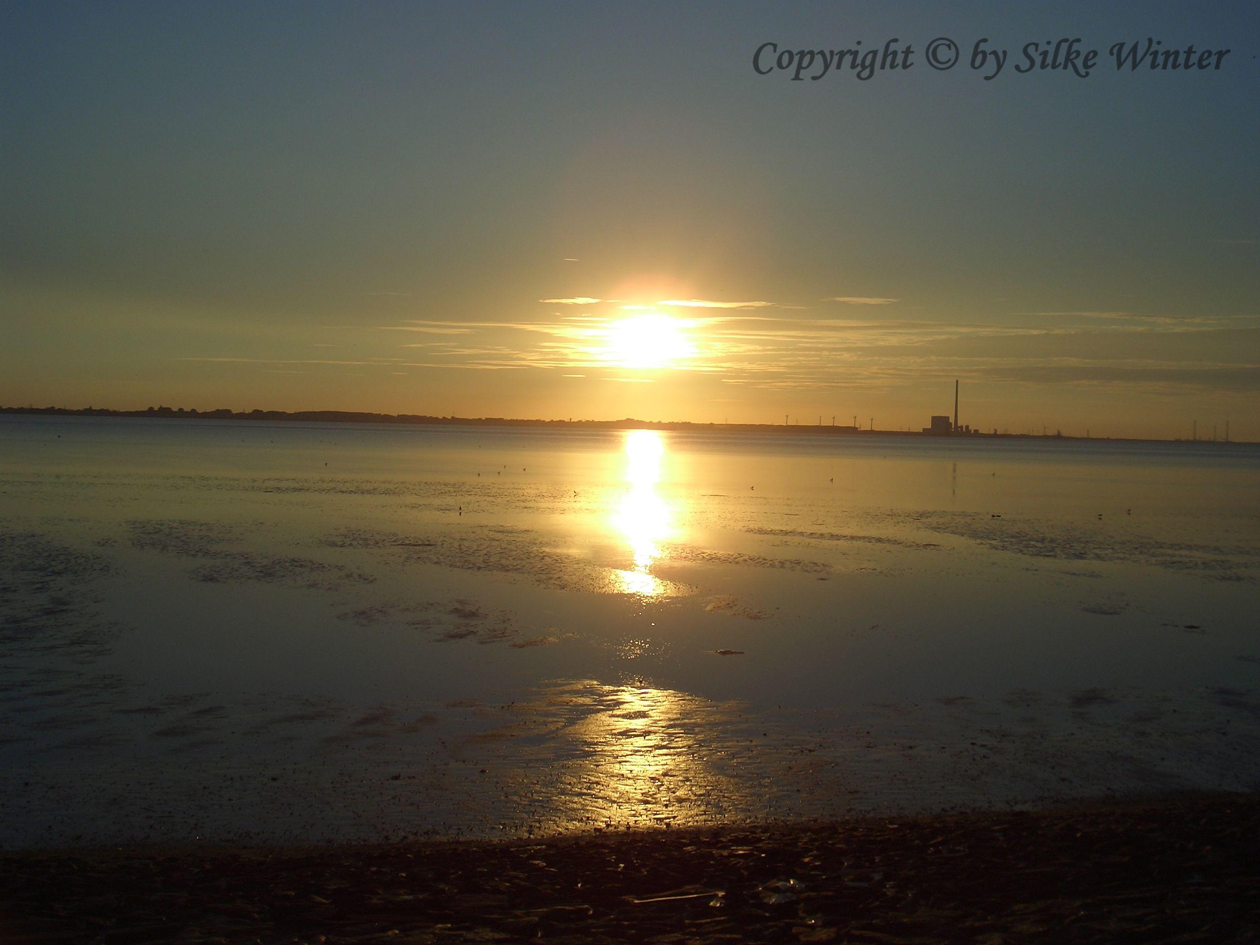 Sonnenuntergang an der Nordsee --- Copyright © by Silke Winter    www.natur-aufnahme.de