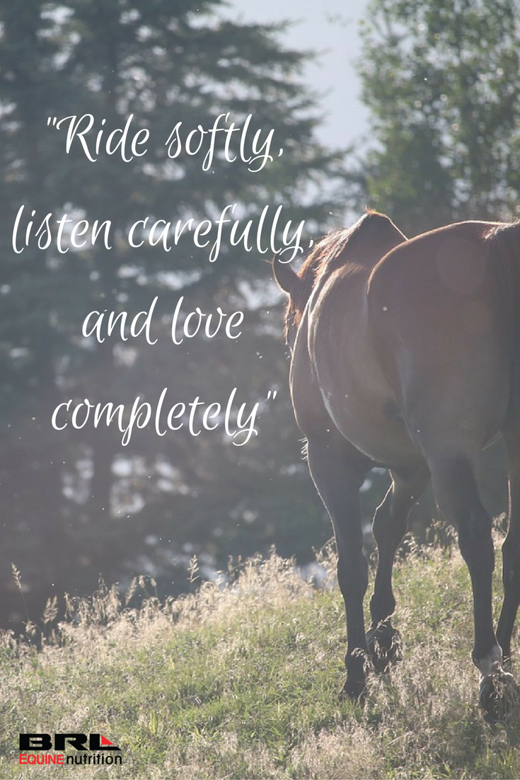 Ride Softly Listen Carefully And Love Completely Equestrian Horse