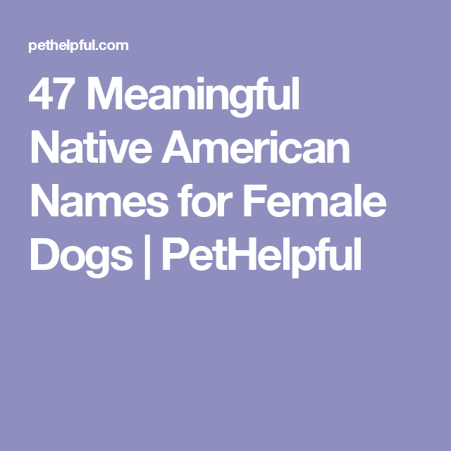 200 Best Native American Names For Female Dogs Female Dog Names Puppies Names Female Meaningful Names