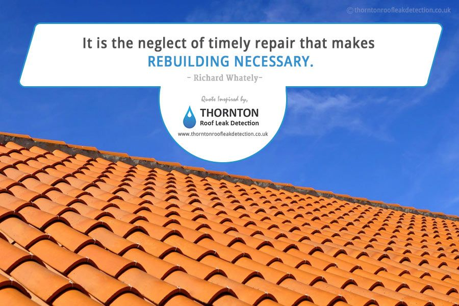 A Quote That Emphasize The Need For Leak Detection And Repair This Quote Is Brought To By Thornton Roof Leak Detection A Speci Leaking Roof Leaks Detection
