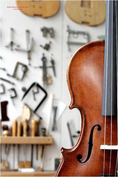 Cello And Wallpaper