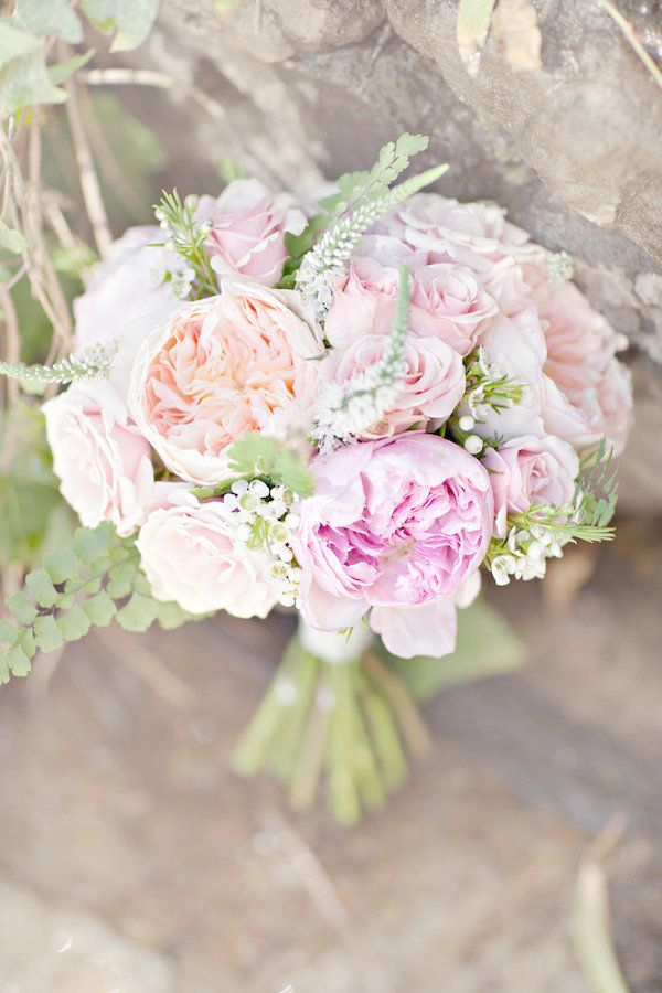 Cabbage roses. Perfection. Photography by glassjarphotography.com, Floral Design by floraloccasions.com