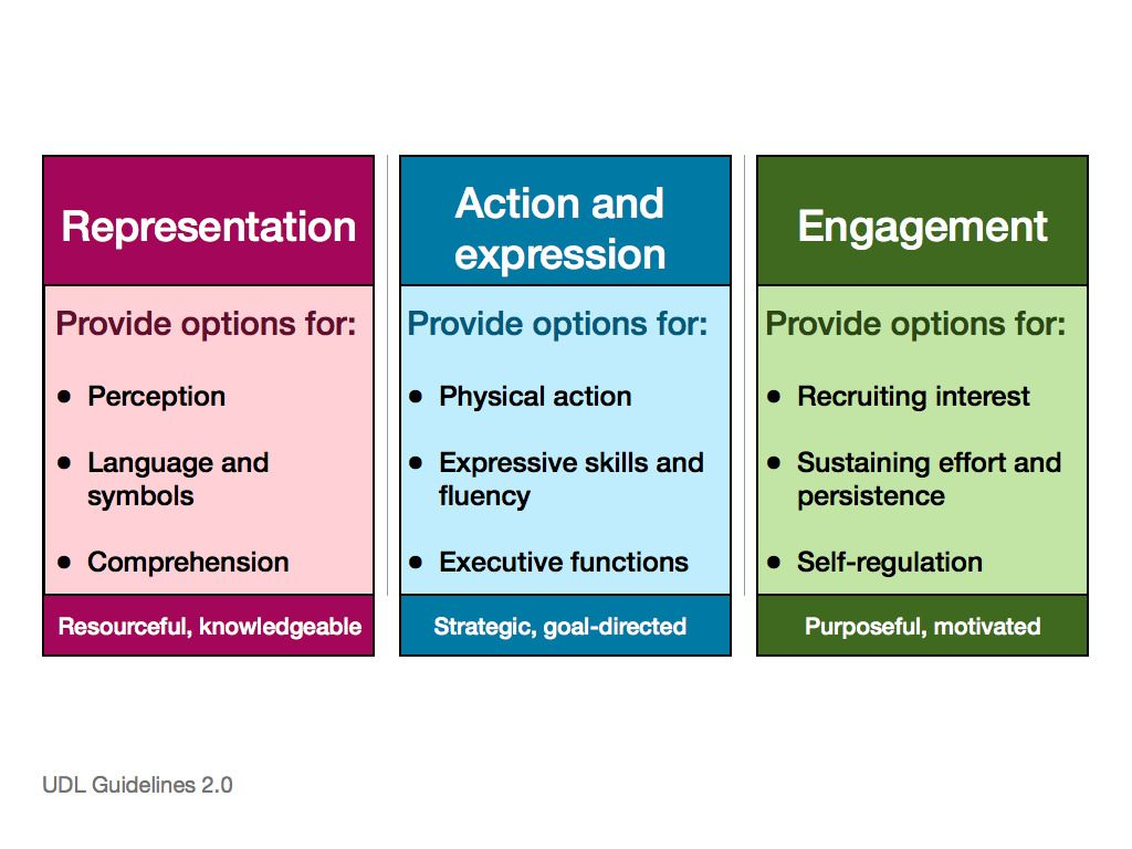 Udl Guidelines Overview