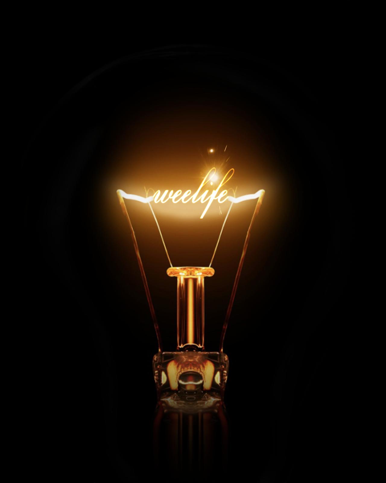WeeLife_PS Edison light bulbs, Momento mori, Decor