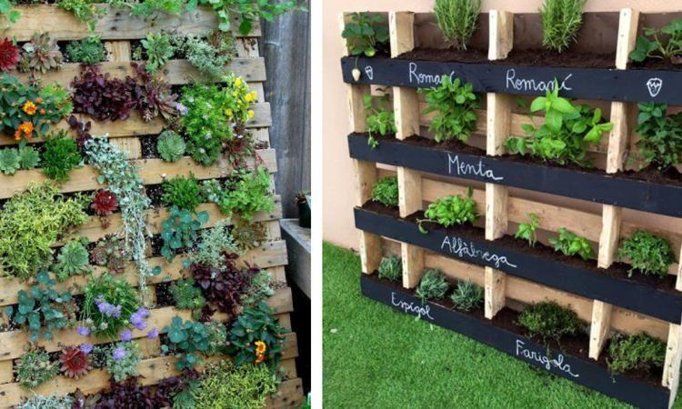 Vous êtes prêt à faire votre jardin à la verticale à partir d une palette  de ... 3c0f99e01be6