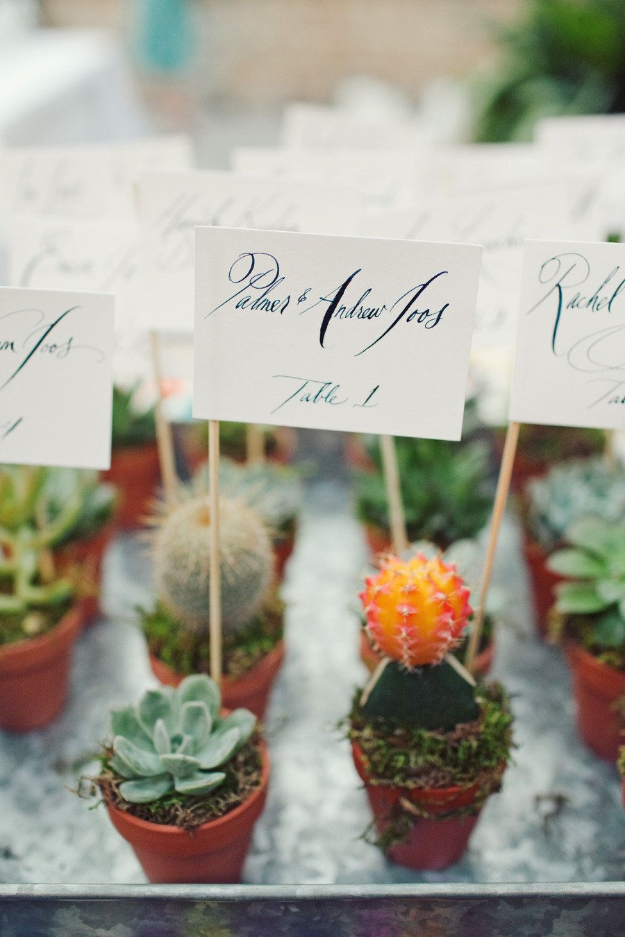 Austin Wedding from The Nichols | Succulent favors, Floral designs ...