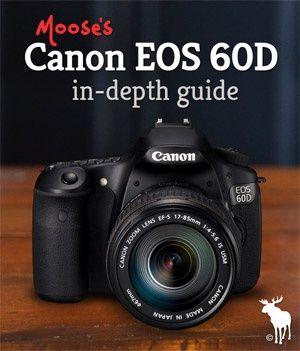 canon 60d tips for beginners photo ops cameras pinterest canon rh pinterest com canon eos 60d guide d'utilisation canon eos 60d guide pdf