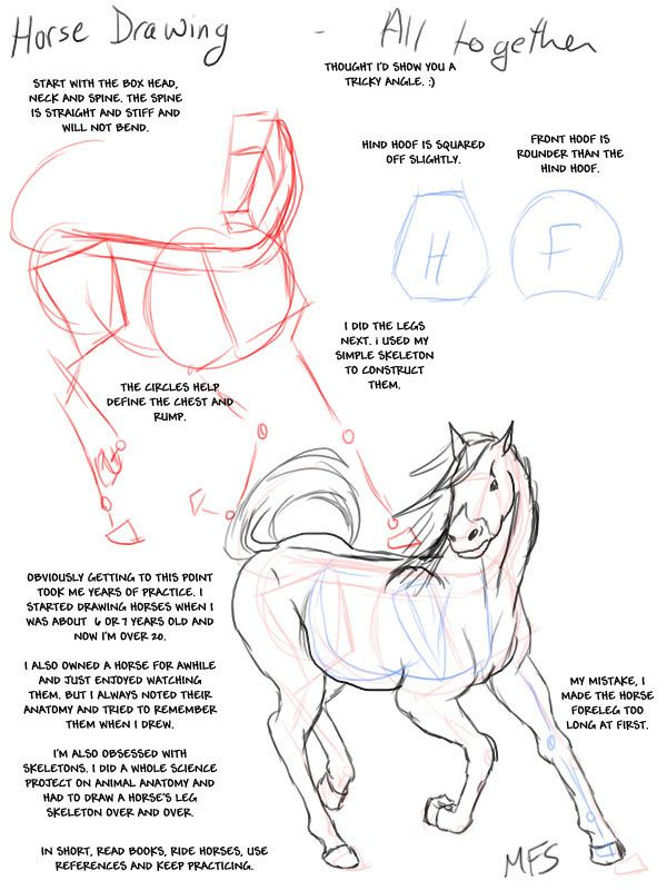 Horse_Drawing__Complete_by_modesty, How to draw Animals, tutorials ...