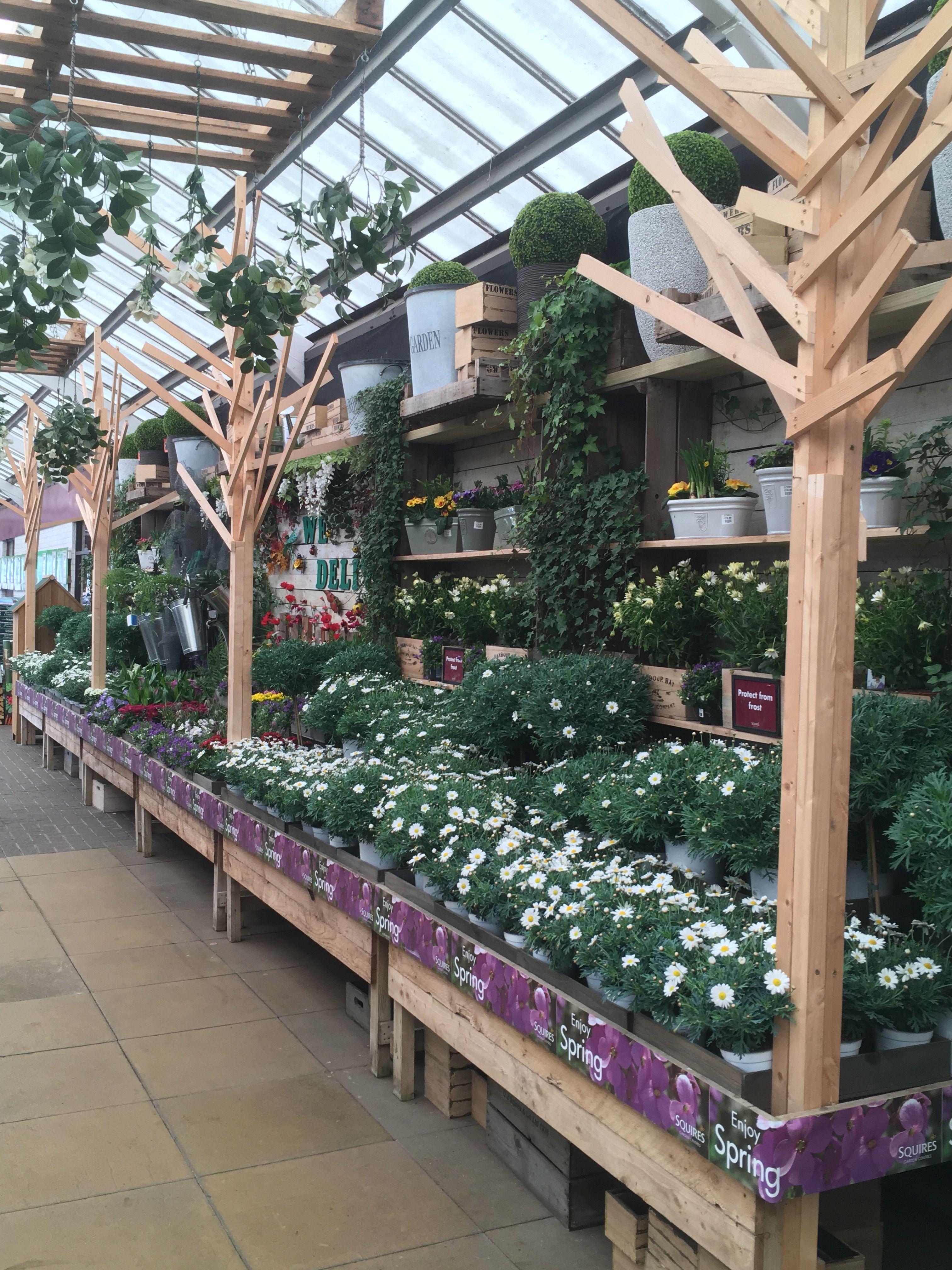 Squires Garden Centre Twickenham Bedding Plants Garden Center Displays Garden Center Bedding Plants