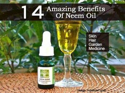 14 Ways To Use Amazing Neem Oil Neem Oil Oil Uses Oils For Skin
