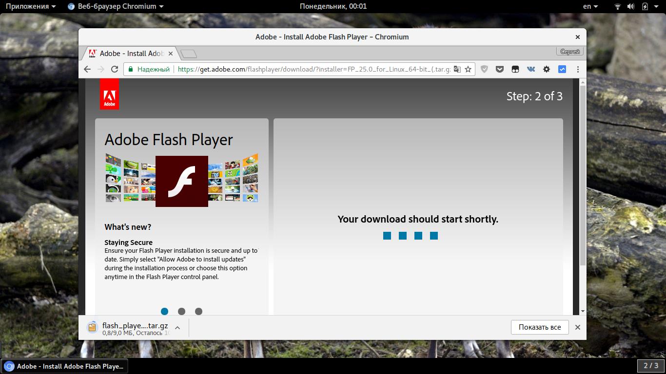 как включить adobe flash player в tor browser гирда