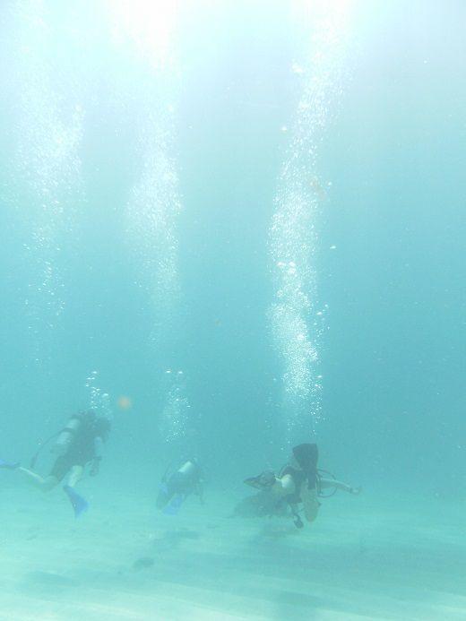 Puerto Morelos es el principal puerto del estado mexicano de Quintana Roo