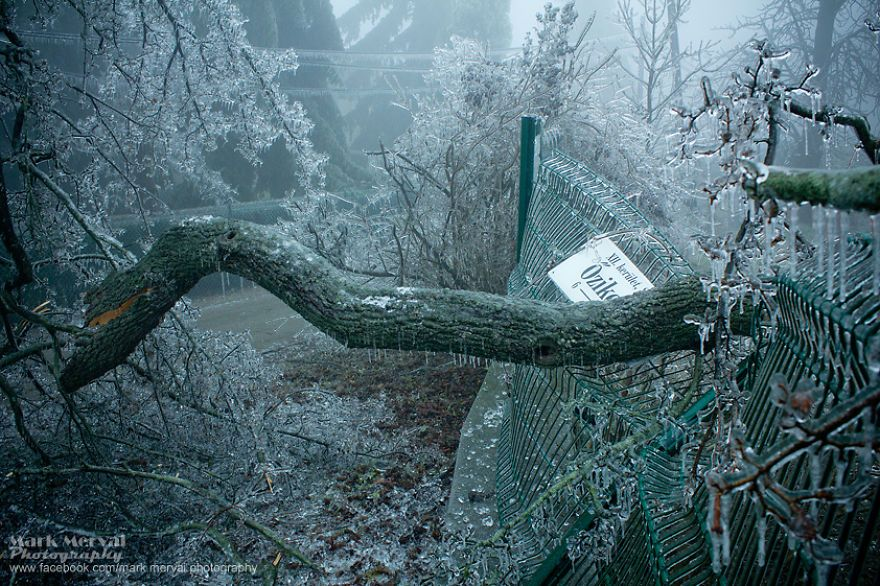 Frozen Apocalyptic Budapest After Ice Fog
